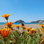 Hochzeitsreisen nach Ischia