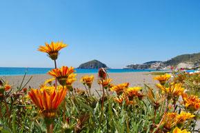 Maronti Strand auf Ischia