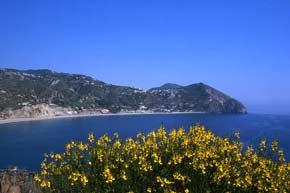 Bella Ischia